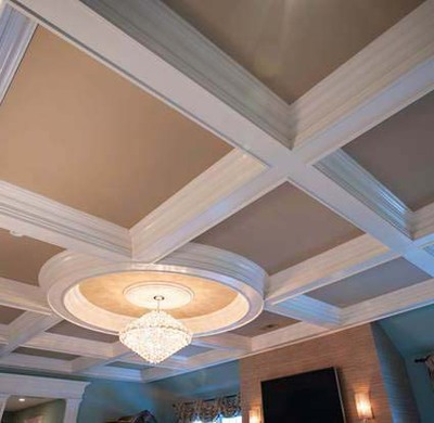 Large custom detail coffered ceiling